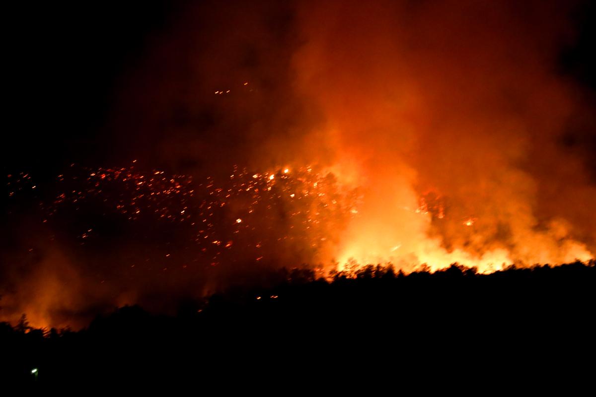Slika vatre na Borskom jezeru