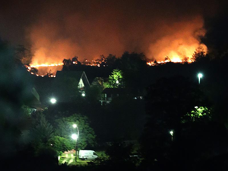 Požar na Borskom jezeru lrg