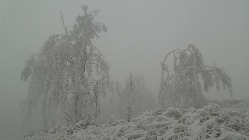 sneg i led Crni vrh 5