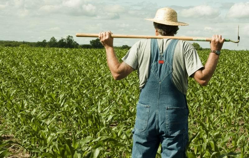 poljoprivrenik