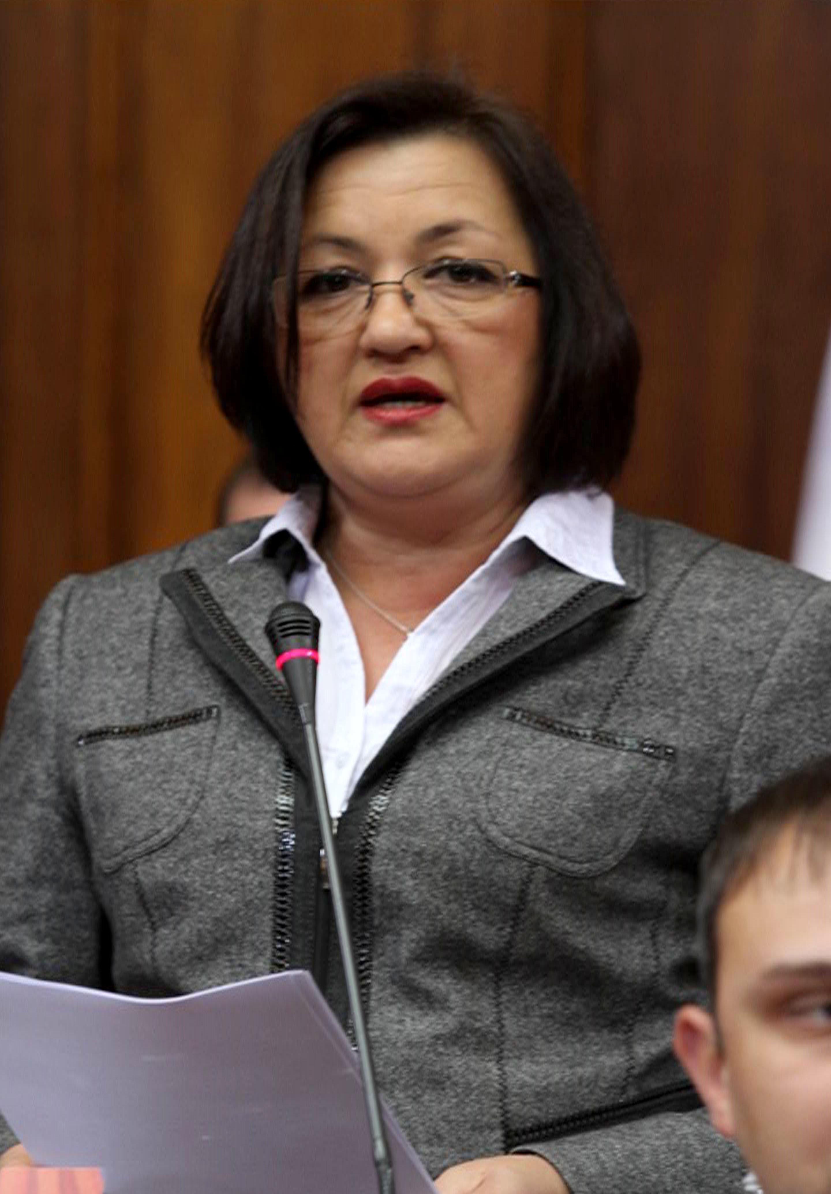 skupstina1 - ministar bogosavljevic boskovic